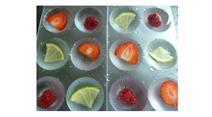 Früchte-Eiswürfel