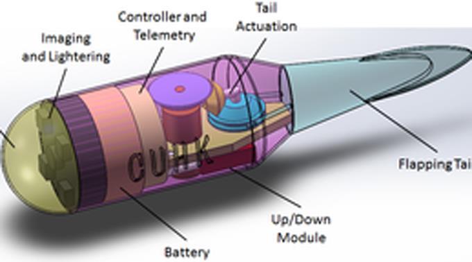 «Tadpole Endoscope»: Mikro-Roboter ferngesteuert.